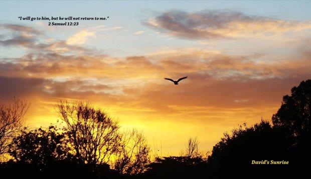 David's Sunrise